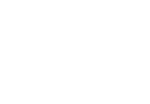 Seawise Financial